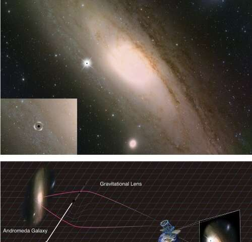 Primordial Black Holes and the Search for Dark Matter from the Multiverse
